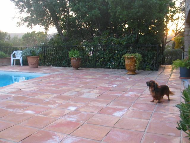 Het terras rondom het zwembad