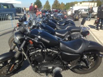 Rencontre des Harley davidson